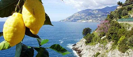 Amalfi.Coast_limoni-1320x564