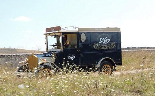 furgone_di_leo