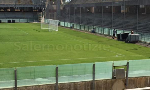 Stadio_Arechi_vuoto_prato_4