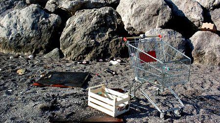 Salerno, uccide a calci un cagnolino: arrestato l'orco