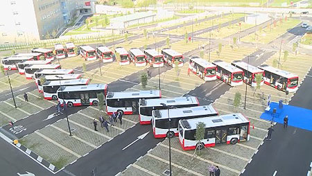 autobus-regione-campania