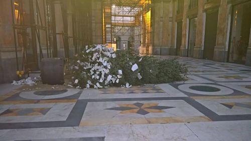 albero-abbattuto-a-napoli-galleria