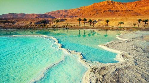 Compaiono pesci nel Mar Morto. Incredibile, ma vero! Si teme la profezia