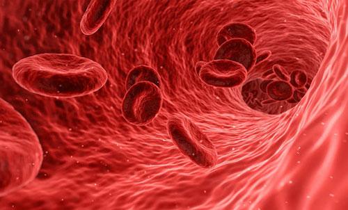 L'intelligenza artificiale fiuta nel sangue il Dna dei tumori